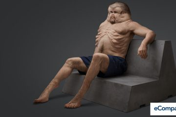 This Is How Humans Should Look Like If We Want To Survive A Car Crash