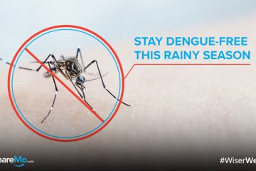 INFOGRAPHIC: How To Stay Dengue-Free This Rainy Season